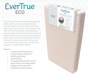EverTrue_Eco_RGB1.jpg